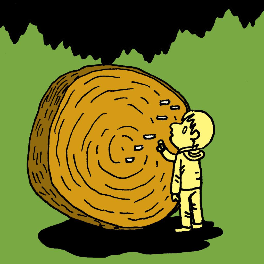 4 Stories - Sequoia